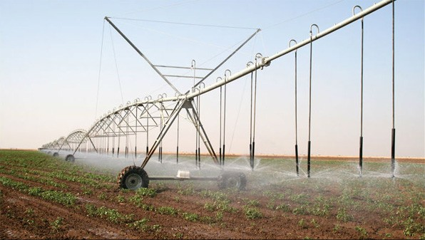 Since 2009, Eritrea has completely weaned itself from the shackles of food aid and has registered consecutive bumper harvests by building more than 400 micro dams and implement vast irrigation farming techniques
