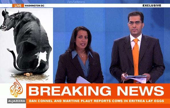 Hostile media tarnish Eritrea image. Is Al-Jazeera that much incompetent?