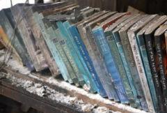 Rare Eritrean History Books