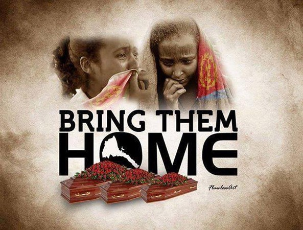 STOP bickering and pointing fingers one another. Help the Eritrean Government to bring the body of our brothers and sisters home for proper burial - NOW!