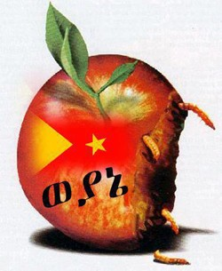 TPLF - a rotten, decaying and fading regime