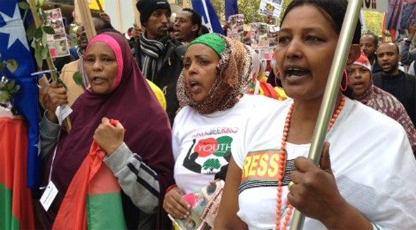 World wide protest against the ethnic Tigrayan-led Ethiopian government following the violent cracked down on peaceful protesters, killing dozens of ethnic Oromo students and injuring or imprisoning hundreds more