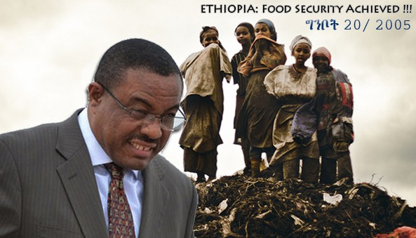 """Food Security at National Level achieved remain with the House hold level"" - PM Hailemariam D."