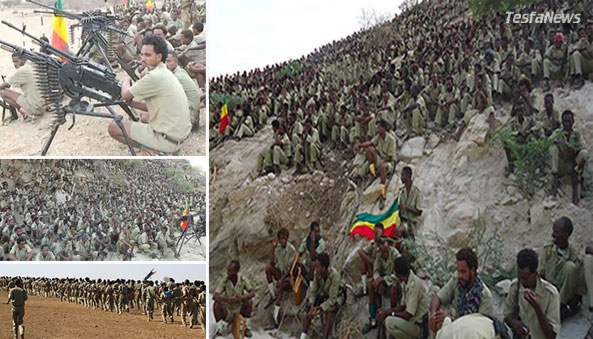 A combined weight of the United Ethiopian Liberation Forces will bring