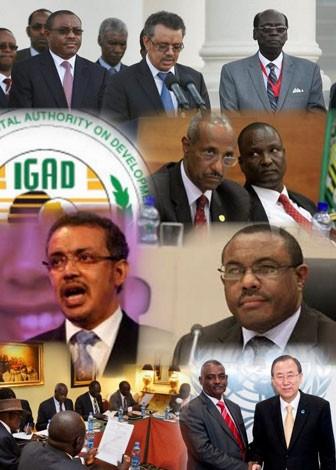 Ethiopia (TPLF) card holders within IGAD
