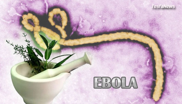 Is it possible to treat Ebola with Homeopathy?