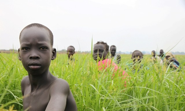 U.S. Bans Financing for Activities in Lower Omo and Gambella Regions of Ethiopia