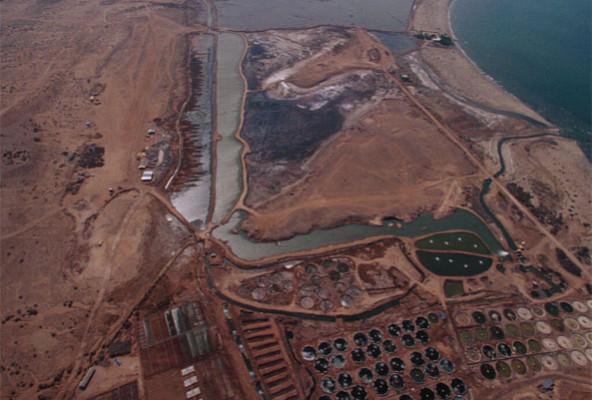 Seawater Farm in Massawa, Eritrea