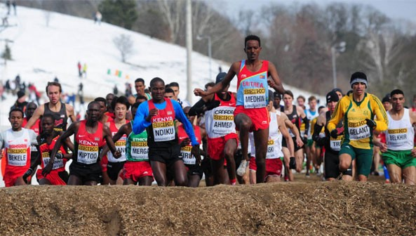 Six of Eritrea's senior men's team will compete at this month's IAAF World Cross Country Championships, Guiyang 2015 on 28 March, lead by Teklemariam Medhin.