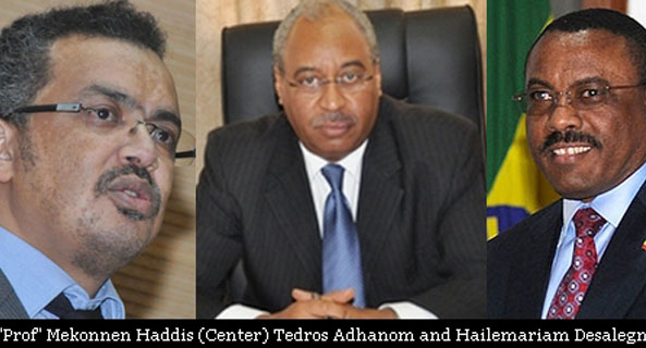 Exposed: Ethiopia's Chief Foreign Policy Adviser is a Phony 'Professor'
