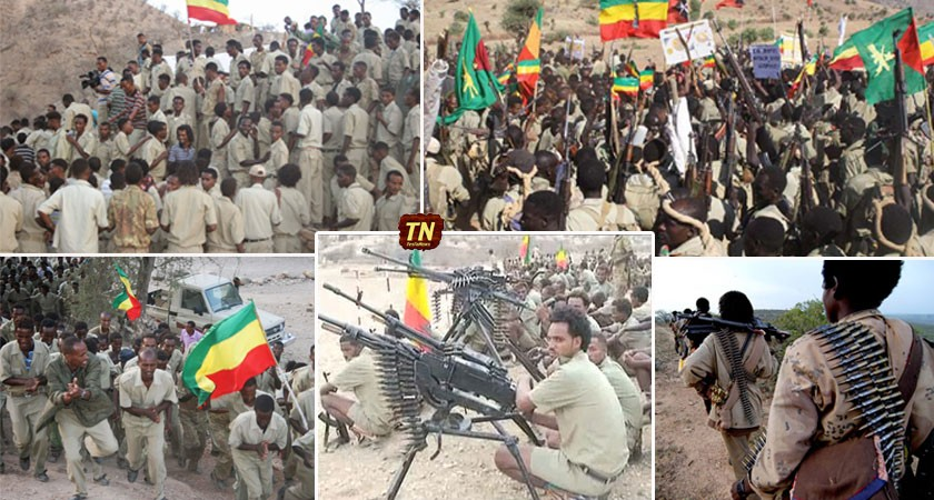 Five Armed Ethiopian Opposition Forces Agreed to Unite