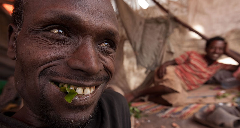 Djiboutians spend far much time idly chewing khat in a hypnotic daze. Djibouti khat chewing and addiction,