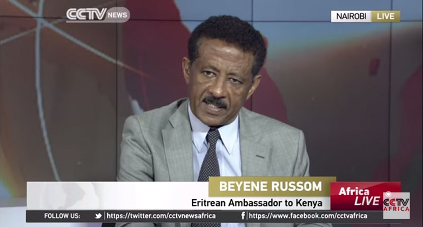 UN Report is Sickening and Disgusting: Ambassador Beyene