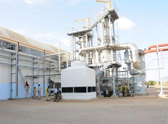 BanaTom Agro Industry