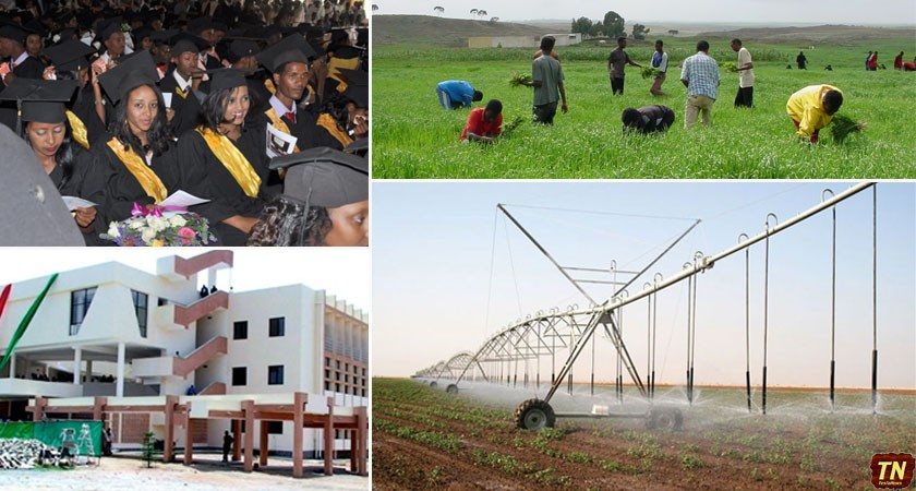 Hamelmalo Agricultural College on Steady Progress