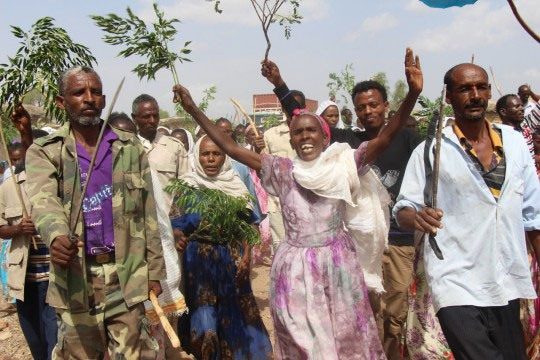 Communities in Eritrea benefitting from solar energy