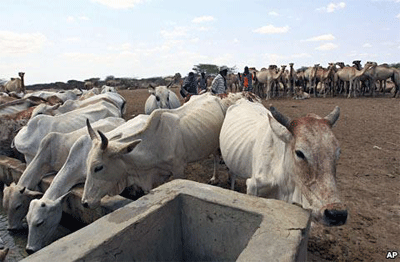 Food crisis hit Ethiopia after, again, after failed rains