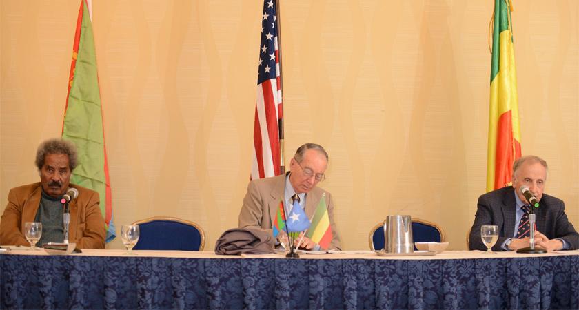 Panelists Cohn, Shinn and Mesfin