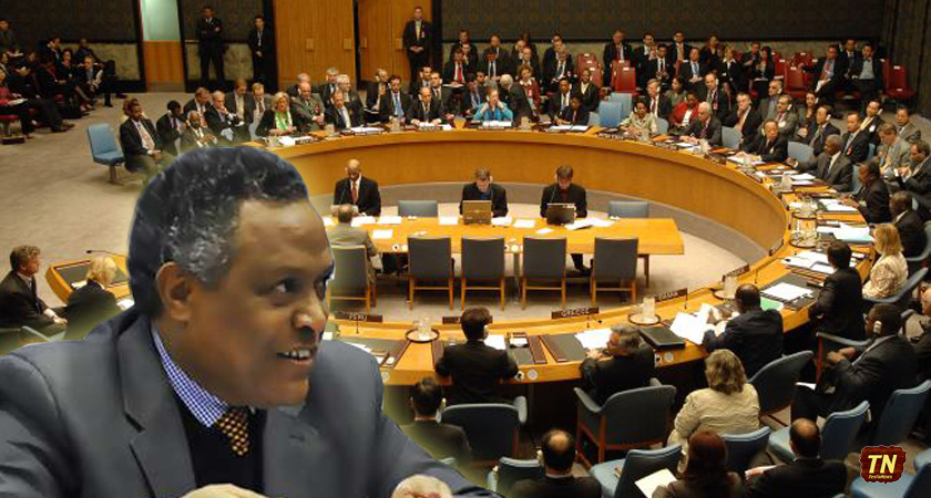 """Eritrea's Statement on """"Working Methods of the Subsidiary Organs of the UN Security Council"""""""