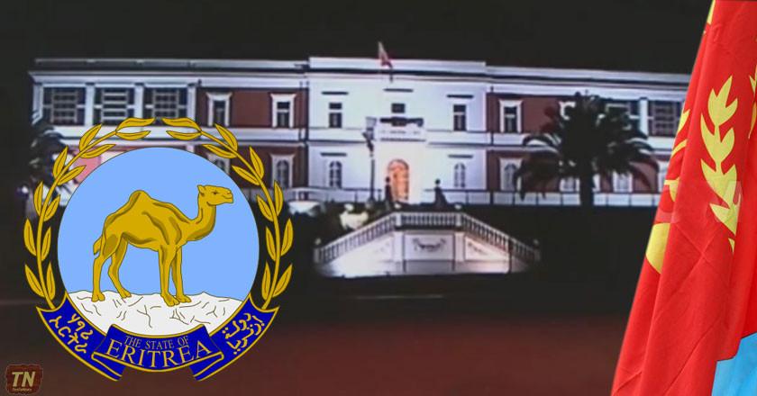 Somalia-Eritrea Monitoring Group Oversteps its Mandate Again