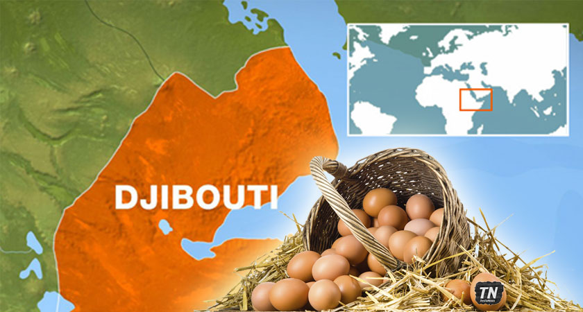 U.S. and Ethiopia Risking All their Eggs in one Unstable Djibouti Basket