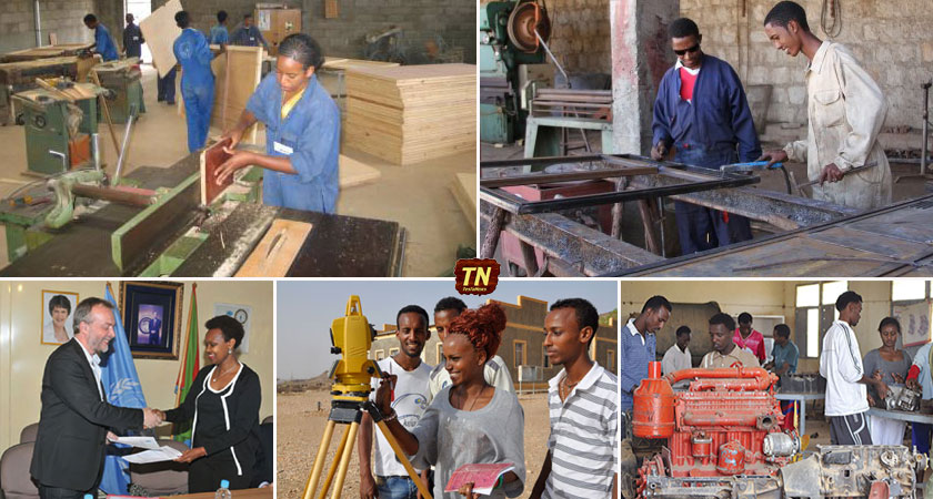 youth employment skills project in Eritrea