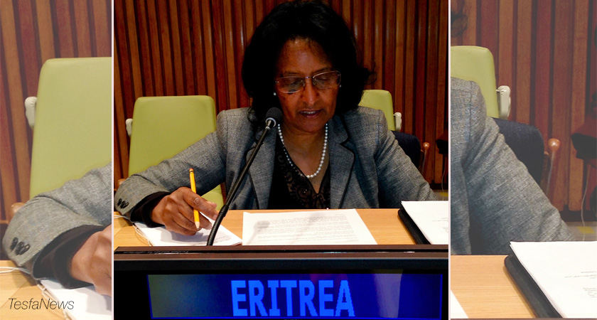 Eritrea's Remark at IPoA Mid-Term Review