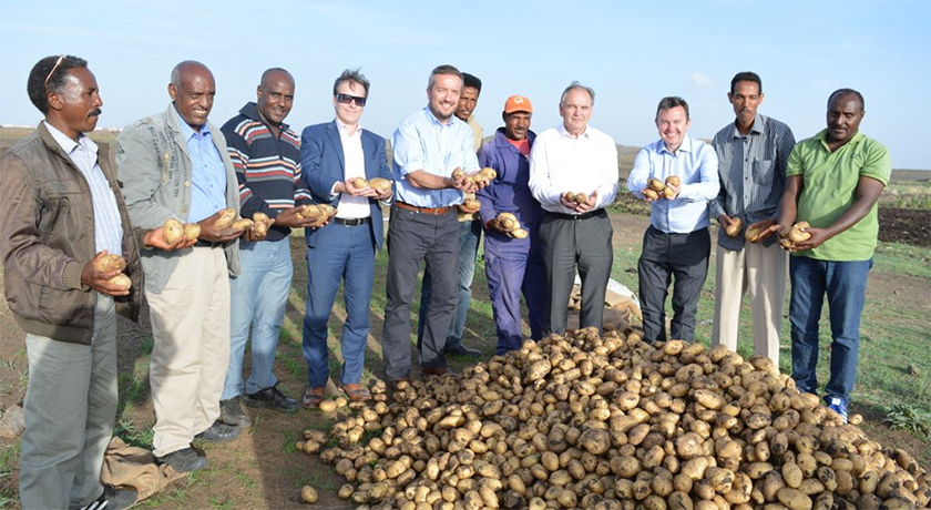 irish project potato farm in eritrea
