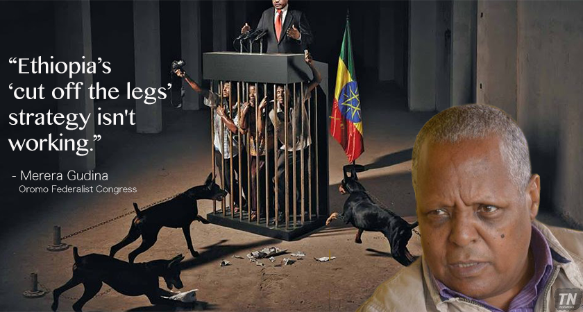 ethiopia Human Rights Violations
