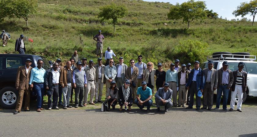 Eritrea: EU Diplomats in Successful Trees Planting Activity