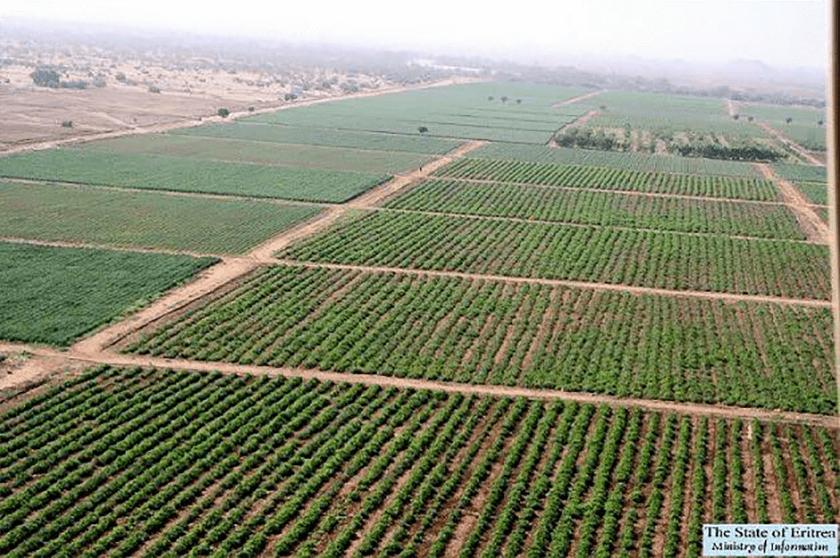 Gerset Farm