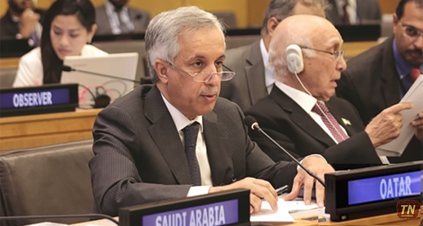 Fair and Peaceful Settlement of Eritrea – Djibouti Conflict Achieved: Qatar