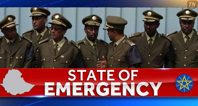 Ethiopian Authorities Release Details of State of Emergency Decree