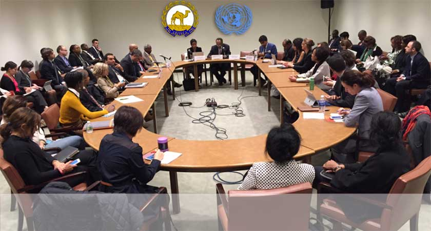 Eritrea – UN Side Event on Mainstreaming Human Rights through Partnership