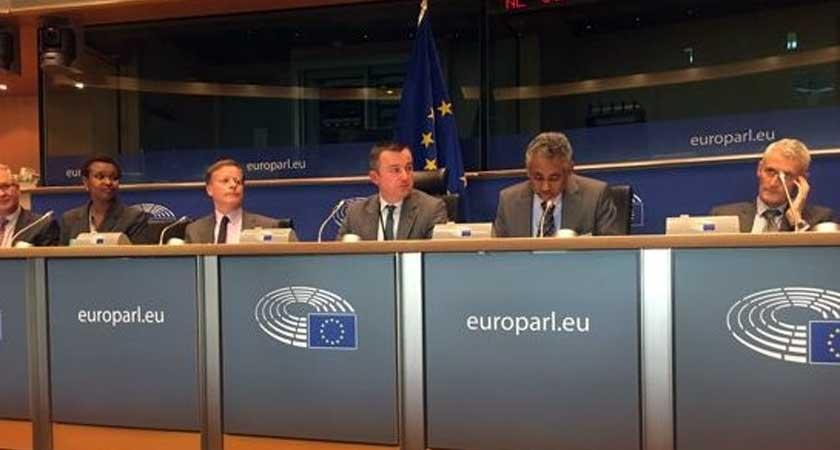 MEP Hayes Hosts EU Conference on Future Development of Eritrea