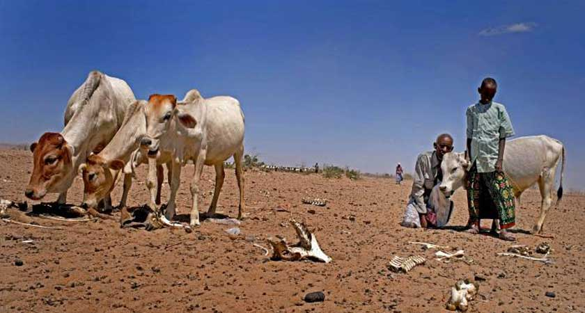Ethiopia: A Low Rainfall Brings Symptoms of New Drought