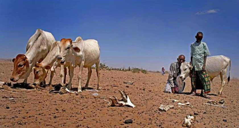New Ethiopia drought update