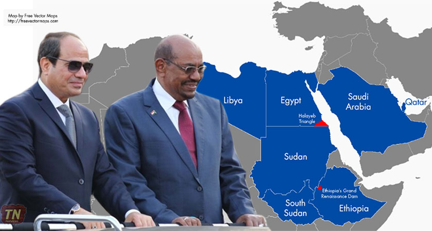 Do Egypt and Sudan have Anything in Common Anymore?