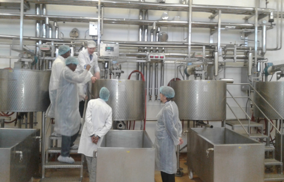 Milk being processed in the factory
