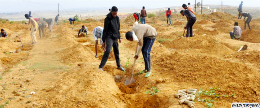 To address the negative effects of climate change in Eritrea