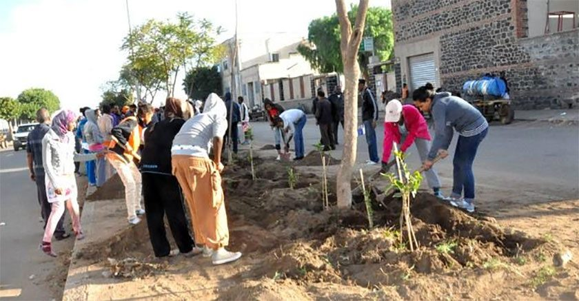 Summer Work Program on the Path of Making Eritrea Green Again