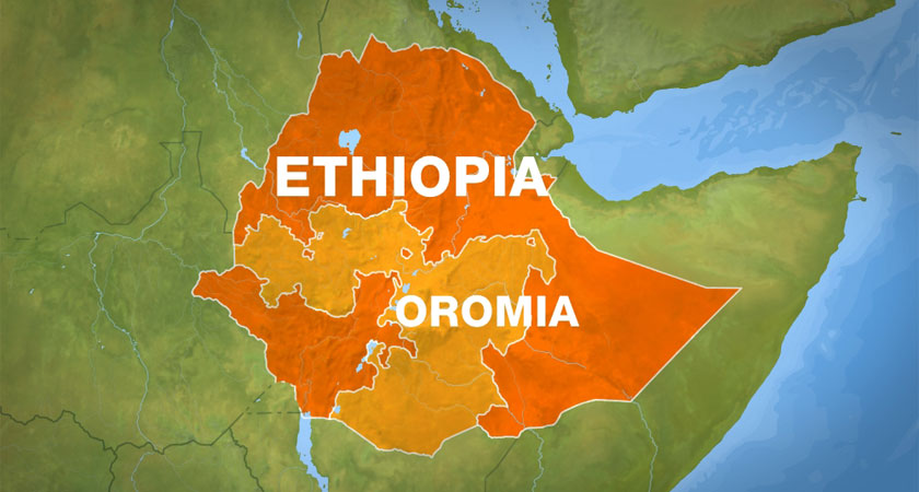 Open Letter to President Isaias from Oromo Scholars and Professionals