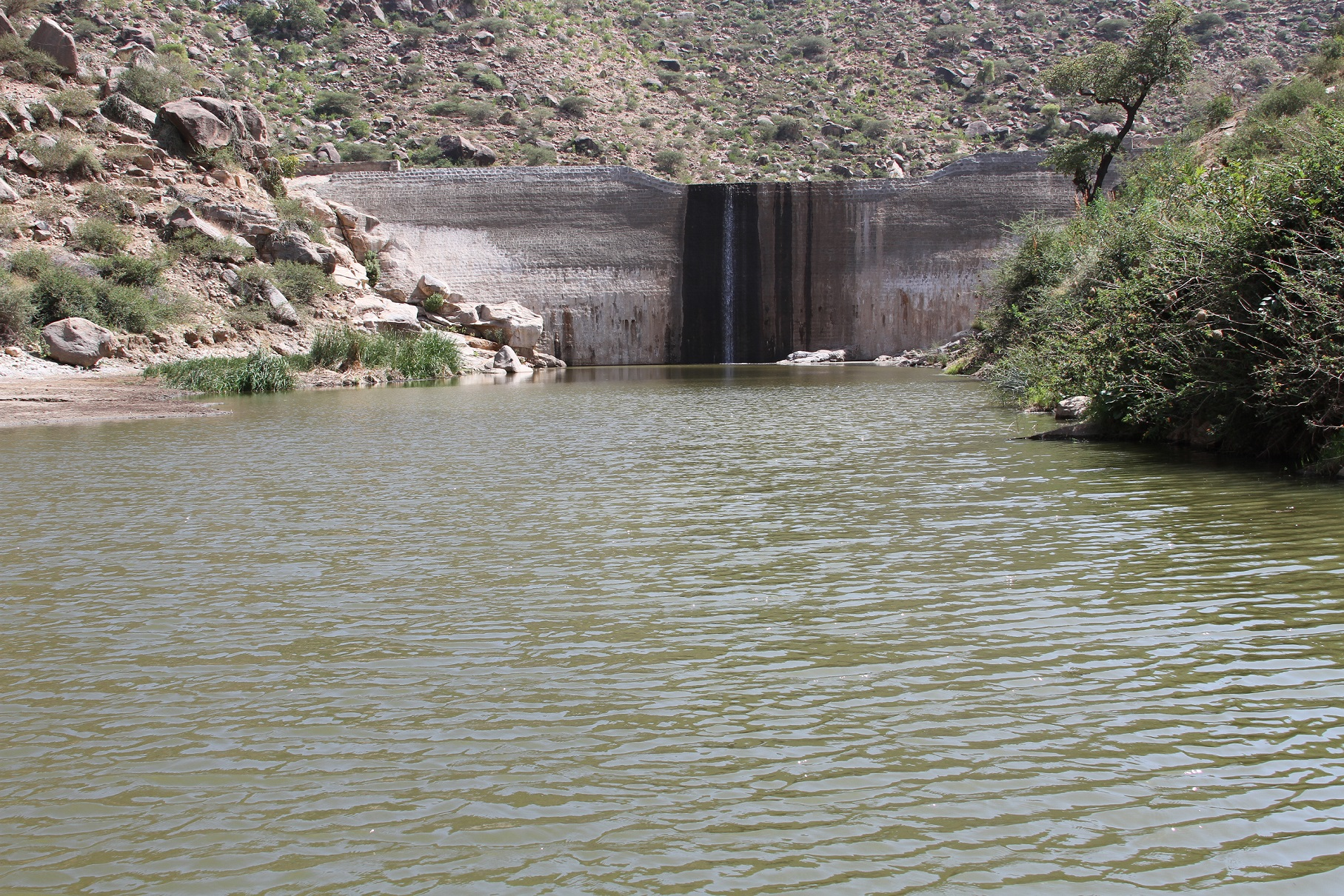 Check dams and other diversion structures Eritrea