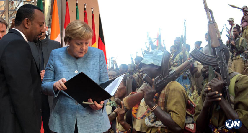 Germany pledged to assist demobilization of Ethiopian opposition fighters