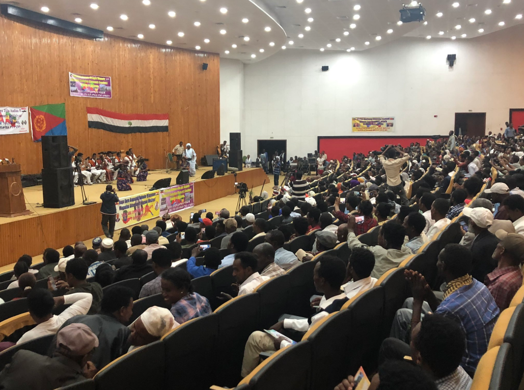 Eritrean public diplomacy and cultural group in Ethiopia