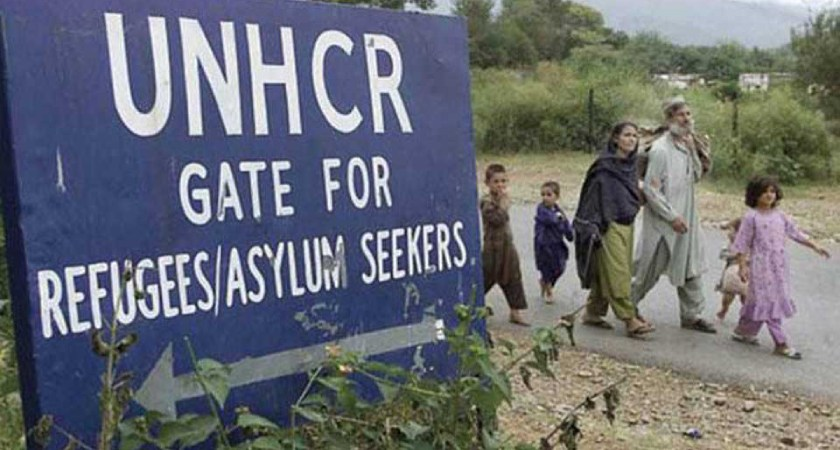 UNHCR Staff Members Solicited Bribes from Refugees: UN Probe