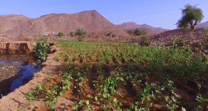 UNDP Climate Change Adaptation Program in Anseba Region