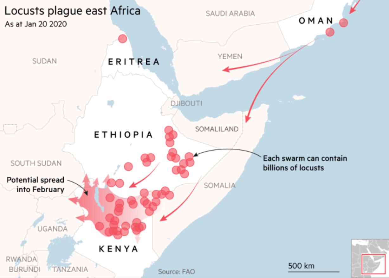 Africa's worst locust plague in 70 years threaten millions across the East Africa.