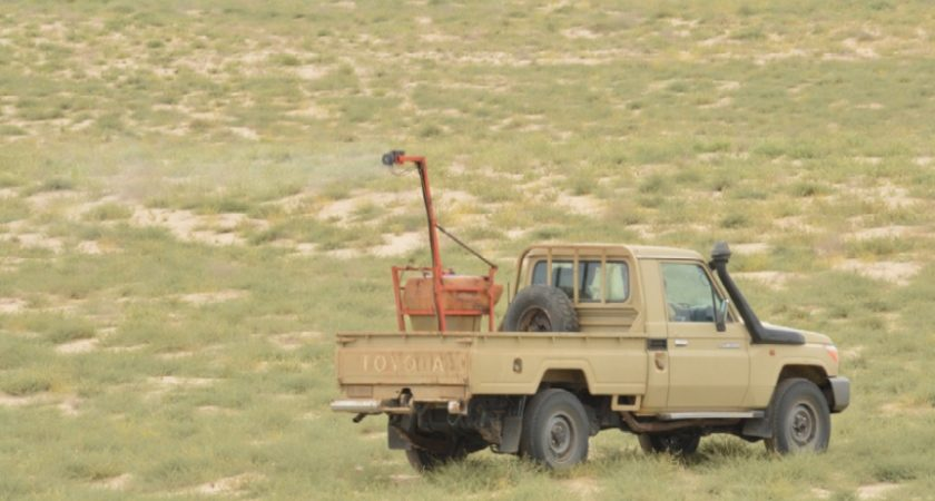 Eritrea: Desert Locusts Control Operations Still Underway