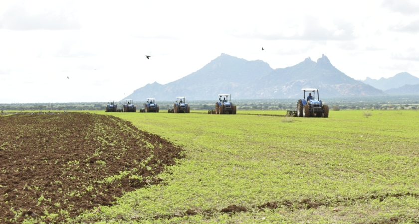 Abundant precipitation in Eritrea improved vegetation conditions and lifted crop prospects